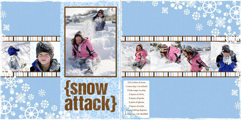 2009_01_28_Snow_Day